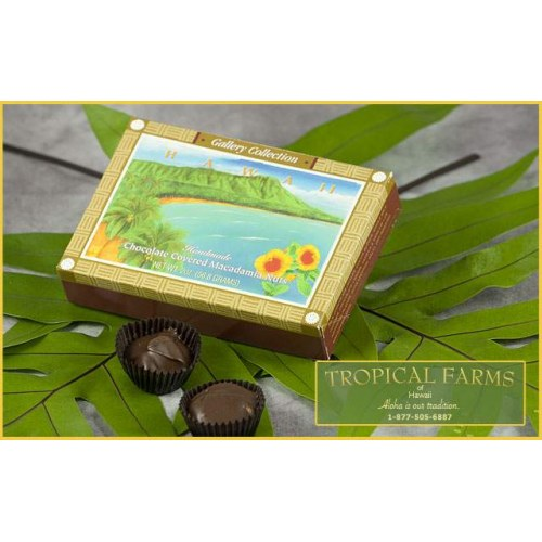 Hawaiian Candies Chocolate Mac Nut 6 pc Gallery