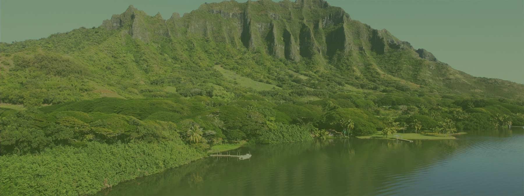 Tropical Farms of Hawaii - The Mac Nut Farm